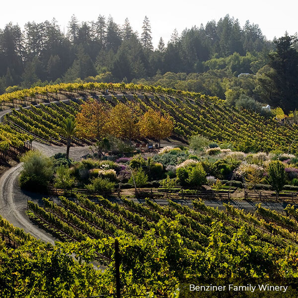 Benziger Winery Sonoma Valley Wine Tours